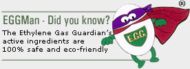 EGGMan Did you Know?